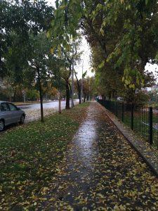 Futás esőben