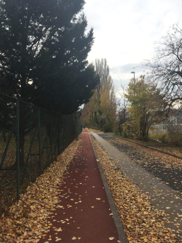 Margitsziget futás